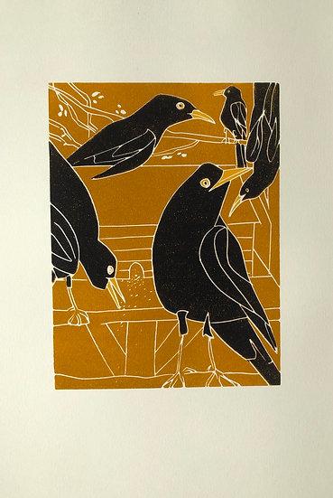 """ Feeding Blackbirds"""