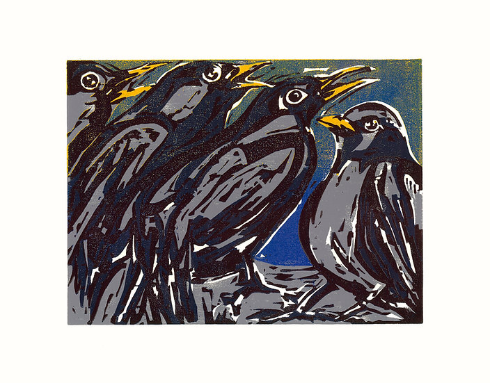 Four Collie Birds / Pack of 6 cards