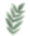 mini-plante-decorative.png
