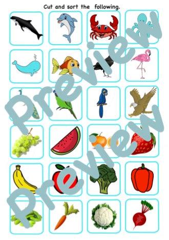 Fruits, Vegetables, Birds and Aquatic Animals