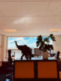 kantoor mey.jpg