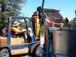 A Family-Run Operation: Char Vale Vineyards and Winery