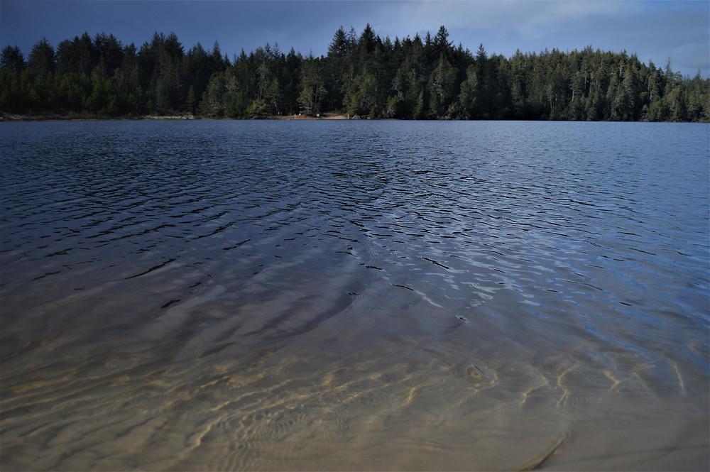 Costa Oregon Jessie M Honeyman State Park