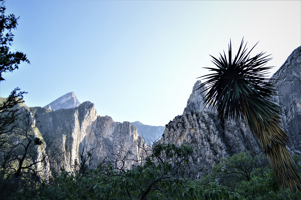 Monterrey mountains