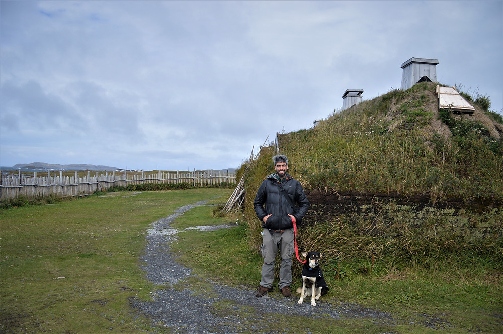 Viking settlement of L'Anse Aux Meadows with dog
