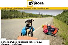 entrevista Portal Explora.jpg