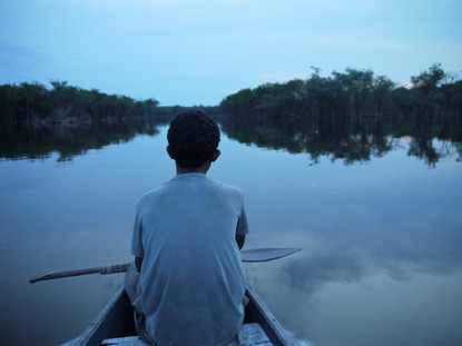 Brazilian Amazon: boat trip