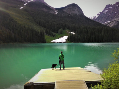 Traveling with my dog in Canada