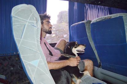 Transporte en un viaje con perro