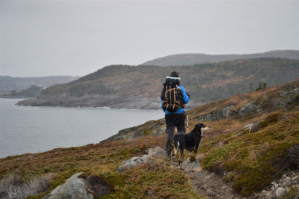 East Coast Trail Newfoundland con perro