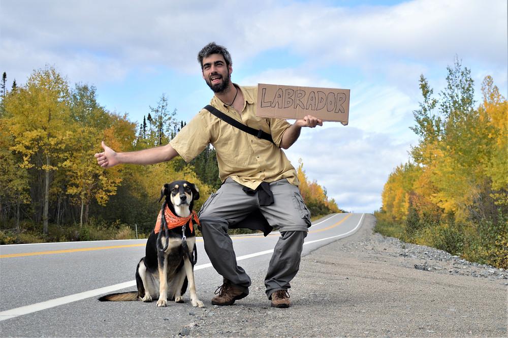 Autostop con mi perra