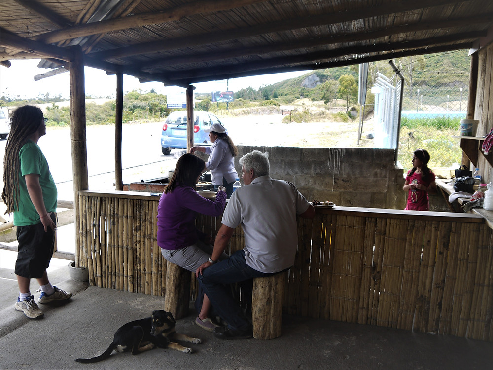 Dog friendly restaurant Otavalo