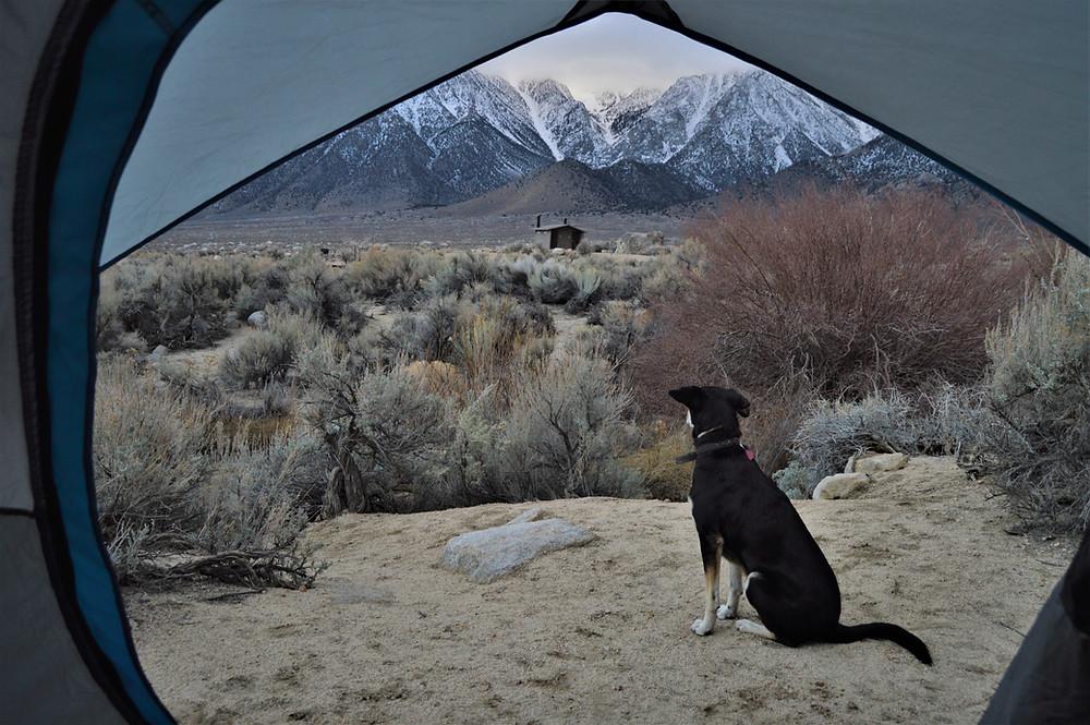 Camping Lone Pine, USA