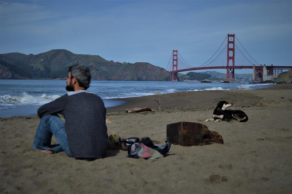 San Francisco with dog Golden Gate