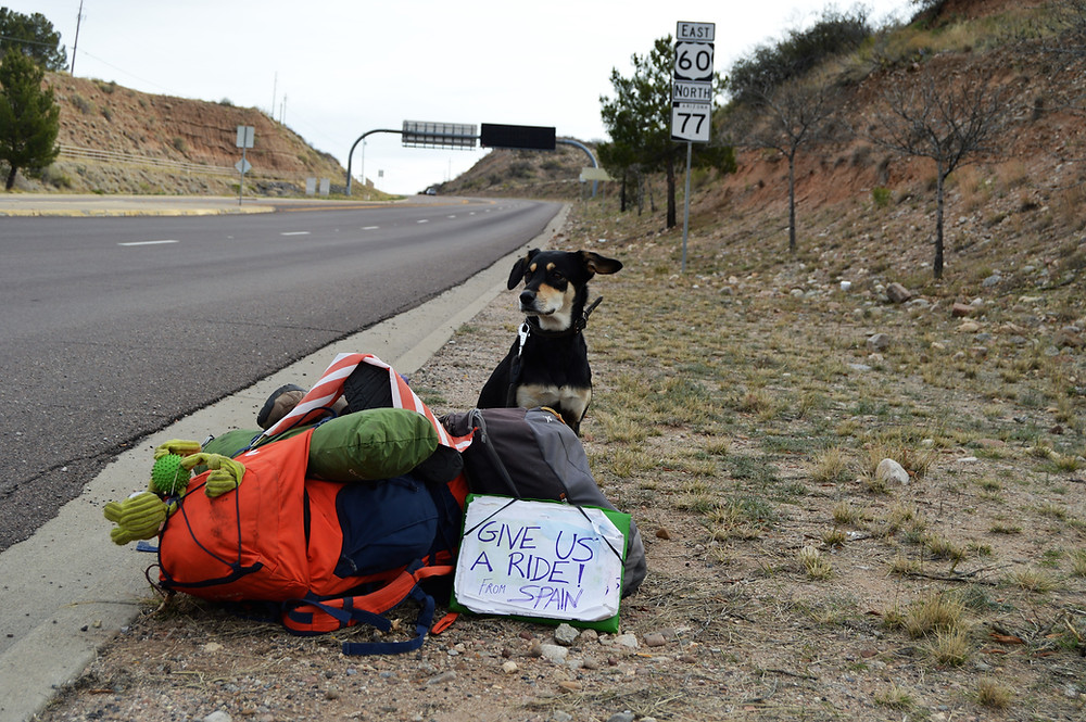 Hitchhiking with dog USA