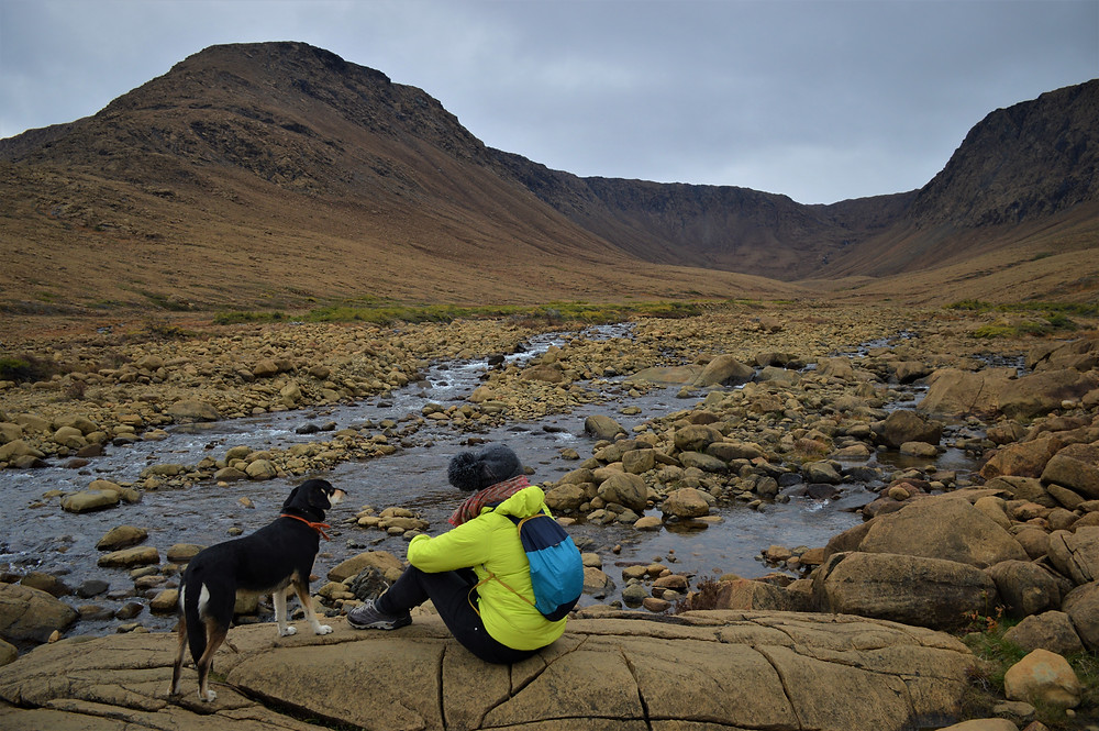 Tablelands, Gros Morne NP con perro
