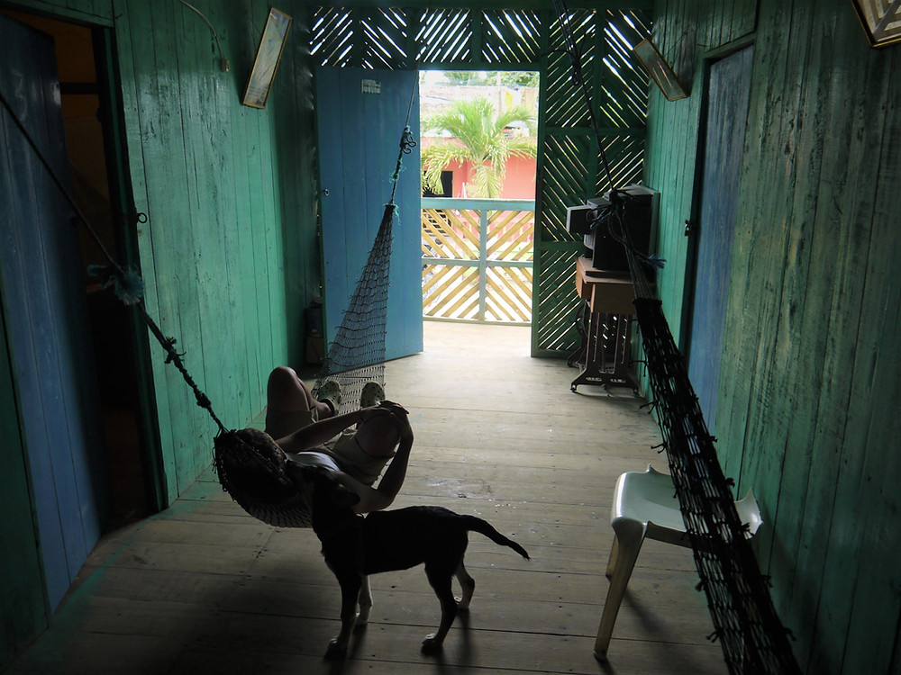 Cheap dogfriendly rooms Mompiche Ecuador