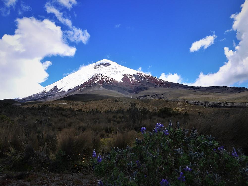 Parque Nacional Cotopaxi Ecuador