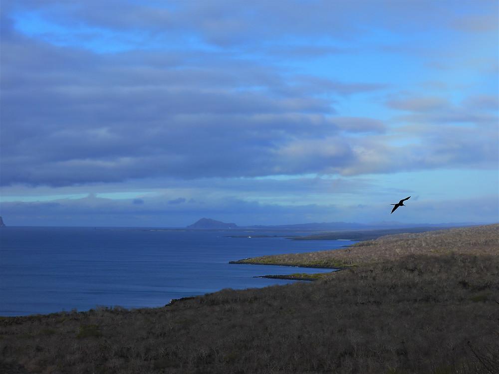 Cerro Tijeretas San Cristóbal Galápagos
