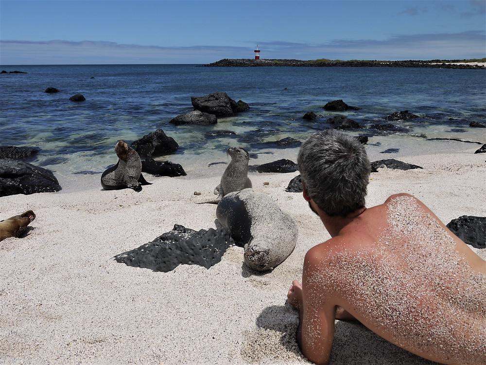 Playa Punta Carola Galápagos