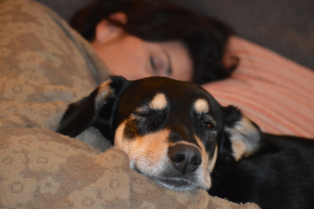 Love siesta time