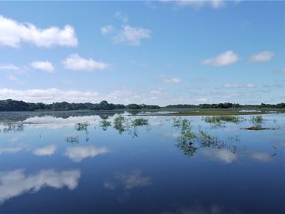 El Gran Pantanal de Brasil