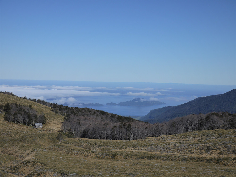 Parque Nacional Puyehue Chile