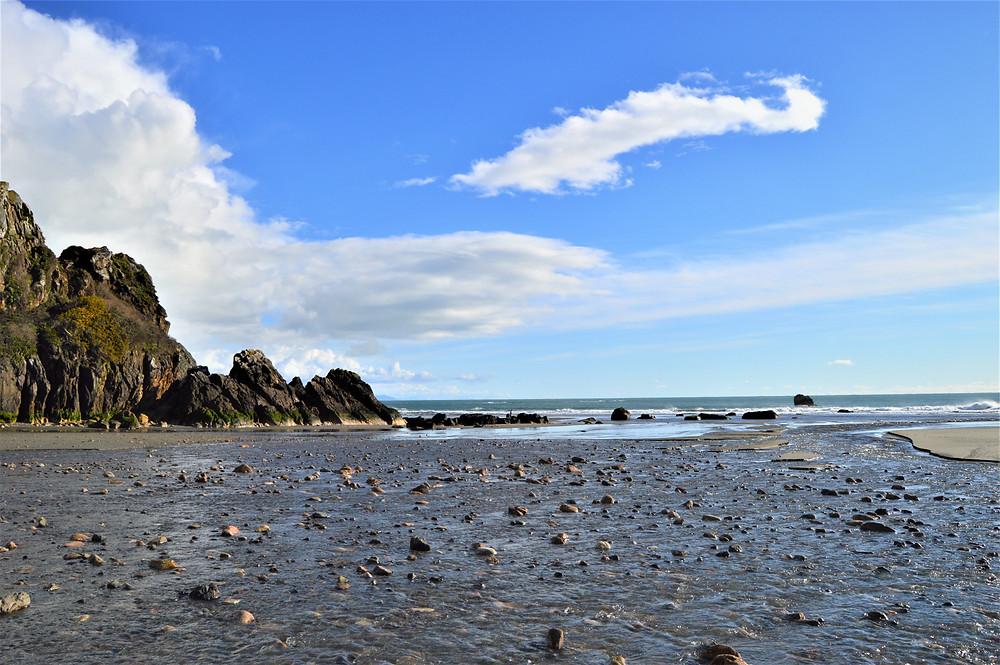Costa Oregon Harris Beach State Park