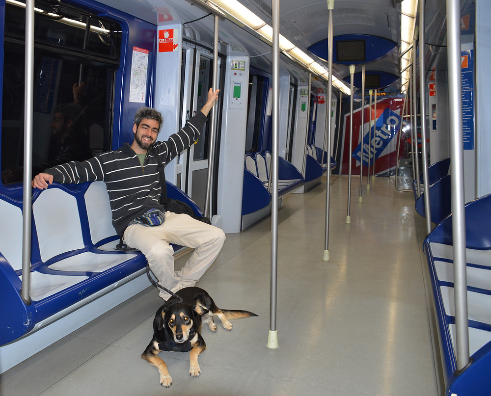 Getting around Madrid with my dog by metro