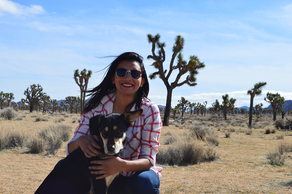 Joshua Tree National Park, California with my dog
