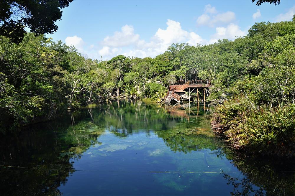 Riviera Maya cenote Jardín del Edén