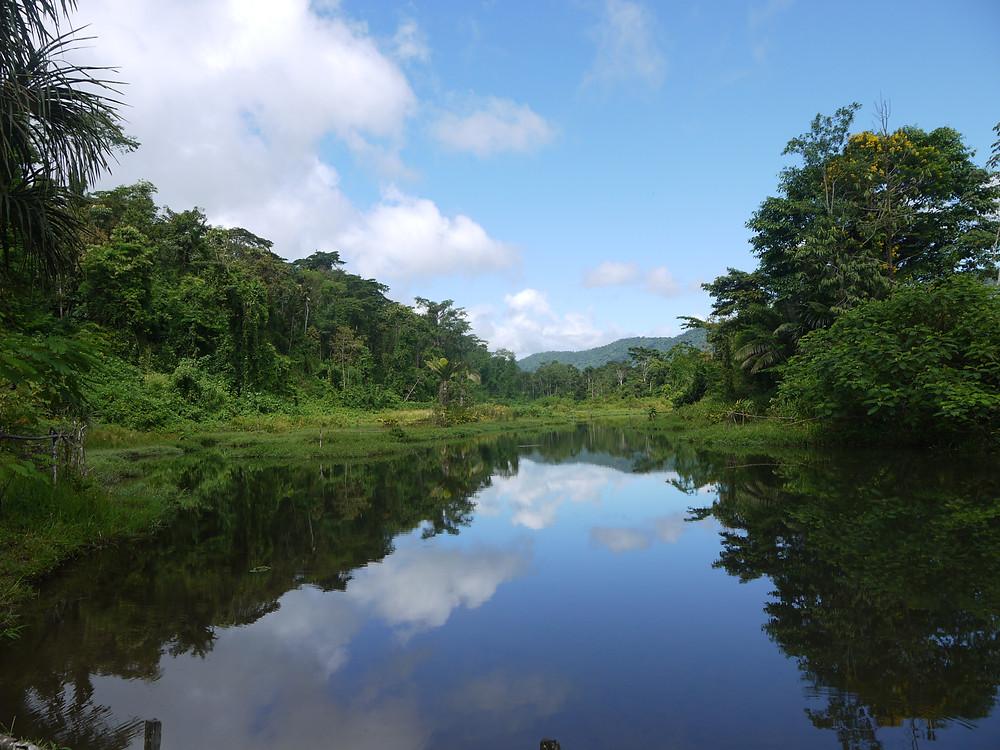 Alrededores del Parque Nacional Manu