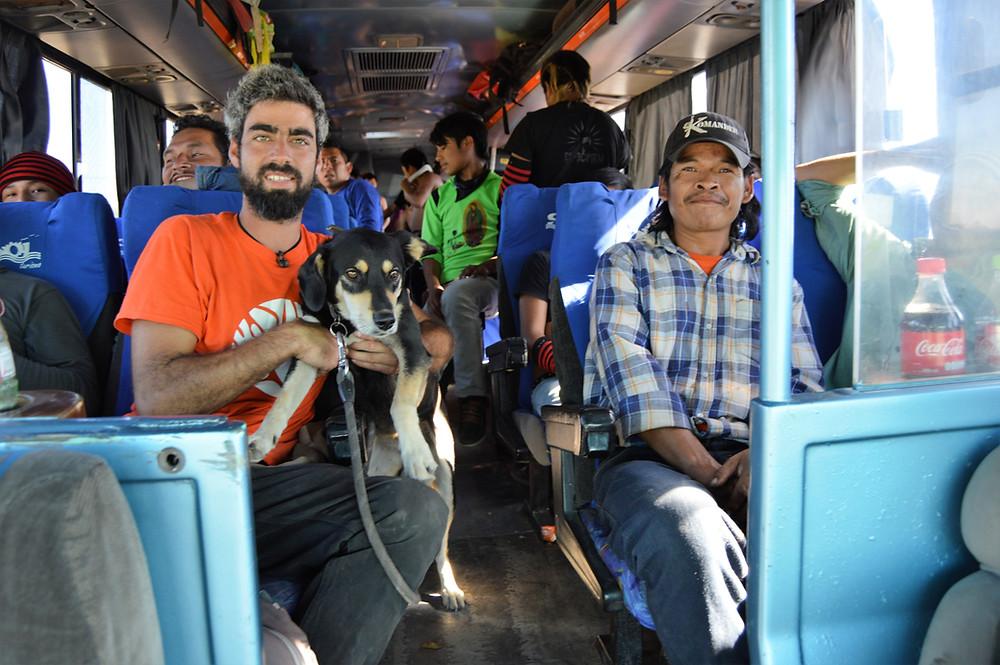 Bus norte México con perro