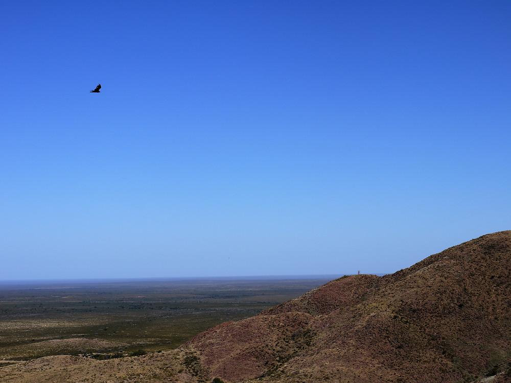 Lihue Calel National Park