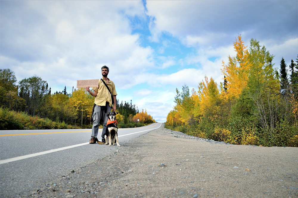 Hitchhiking with my dog Canada
