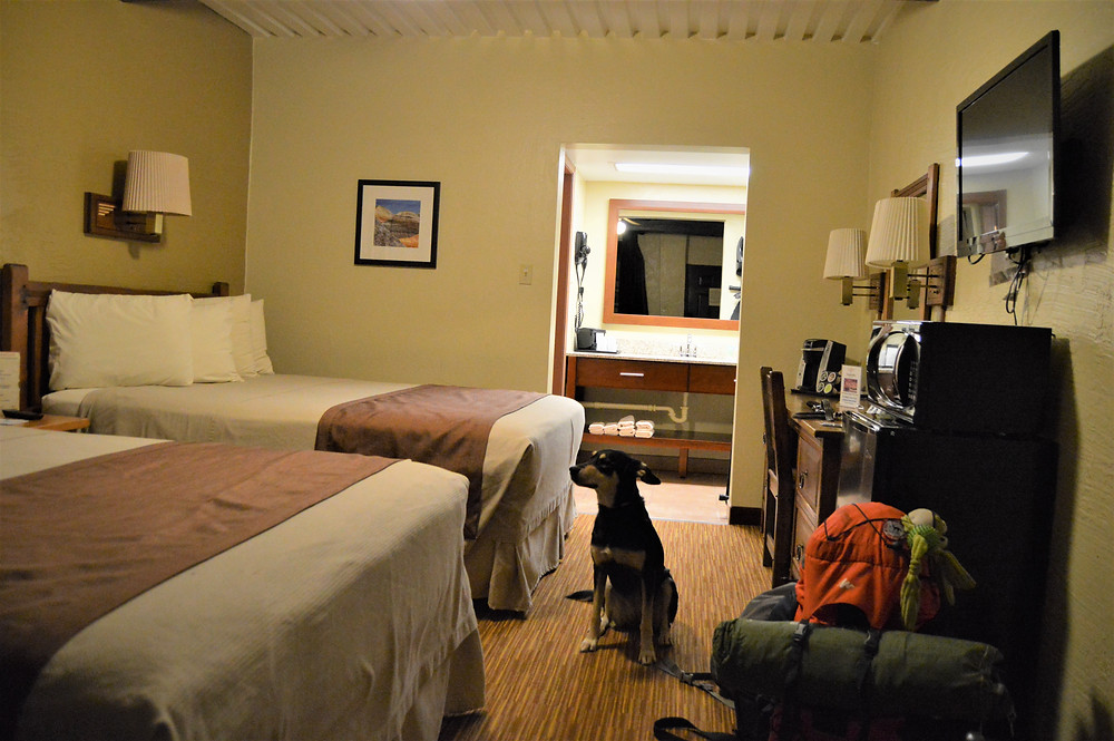 Thunderbird Lodge Canyon de Chelly dog friendly