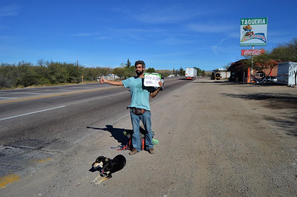 Viajar a dedo México con perro