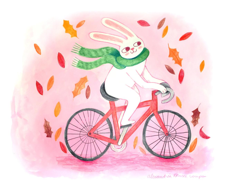 rabbit-on-bike.jpg