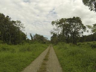 PANAMA Guabito Border Detour