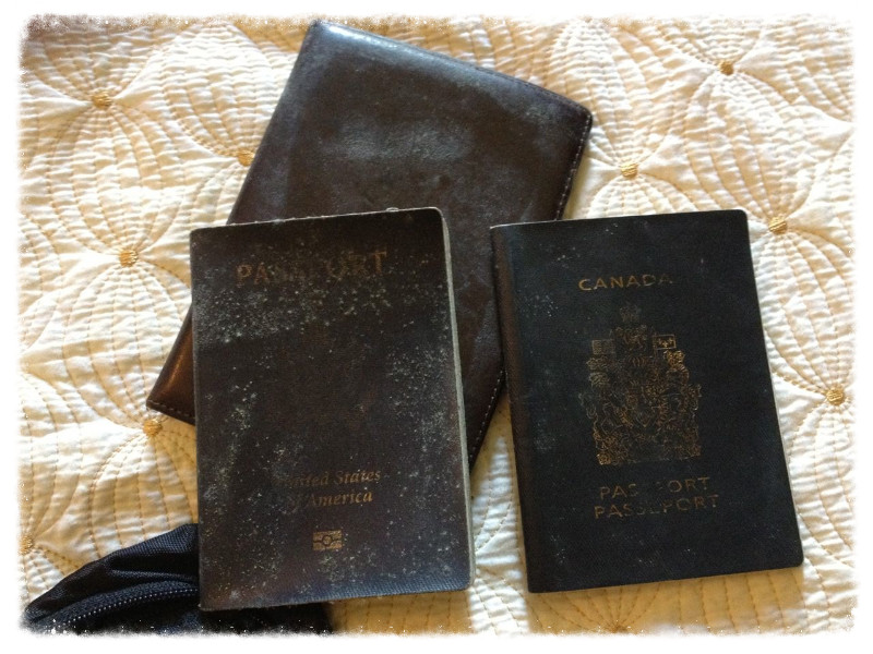 Why is the American passport more mold-prone than the Canadian?
