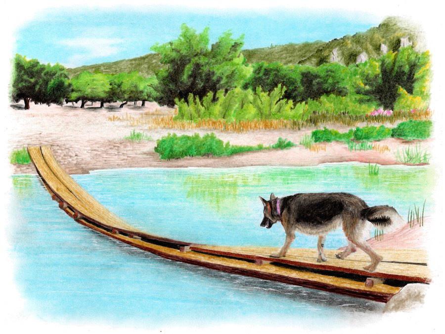 Drawing of German Shepherd crossing broken bridge over river