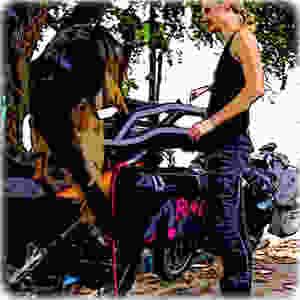 Cartoon of German Shepherd dog leaping onto motorcycle dog carrier