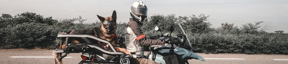 woman-and-german-shepherd-dog-ride-on-BM