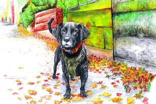 Artistic drawing of black dog standing among colorful autumn leaves