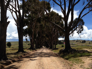 BOLIVIA Tambillo to Puma Punku Archaeological Site Skirting Lake Titicaca
