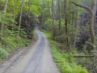 USA TN Chilhowee-Tail of the Dragon Loop
