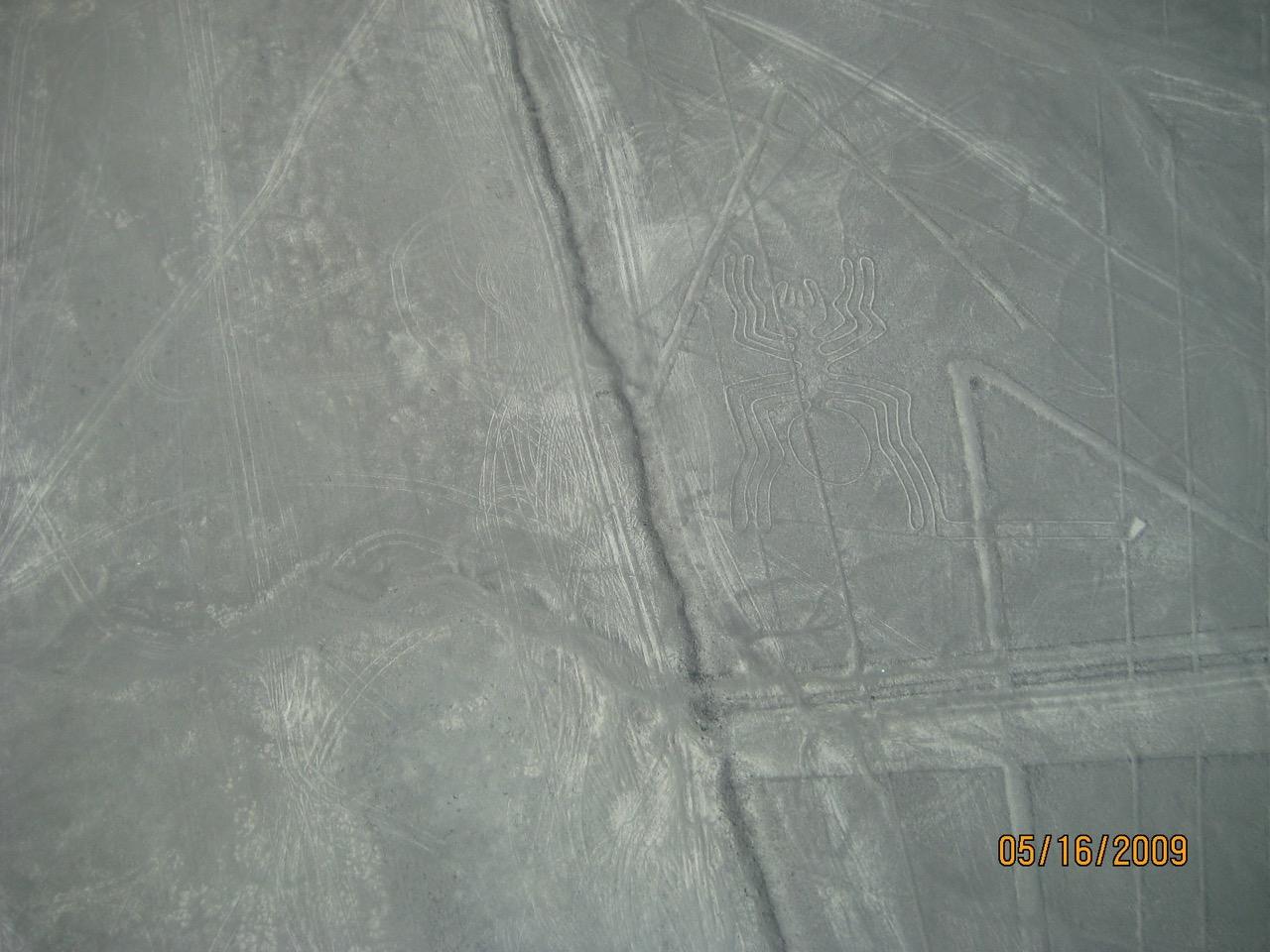 Nazca lines 'Spider' - Nazca, Peru