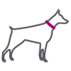 Stylized icon of large grey Doberman dog outline with pink collar