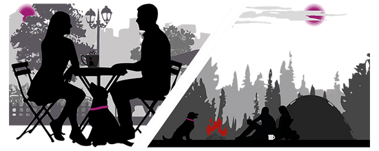 Silhouette of people drinking coffee with dog on one side and people camping with their dog on the other side