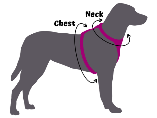 Silhouette of grey dog wearing a pink harness with two arrows to determine the measurements